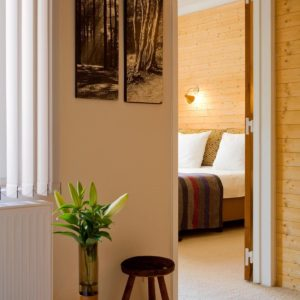 cosy suite of aplace antwerp